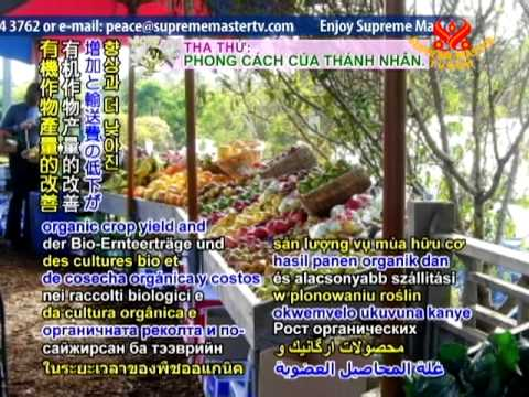 The organic vegetable market in Singapore increases in size and popularity