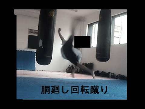 The Power of Do Mawashi Kaiten Geri (Kyokushin Wheel Kick - 胴回し回転蹴り)