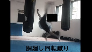 The Power of Do Mawashi Kaiten Geri (Kyokushin Wheel Kick - 胴廻し回転蹴り )