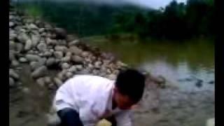 Phim | Câu cá Chép 7,5kg ở Tân Uyên, Lai Châu | Cau ca Chep 7,5kg o Tan Uyen, Lai Chau