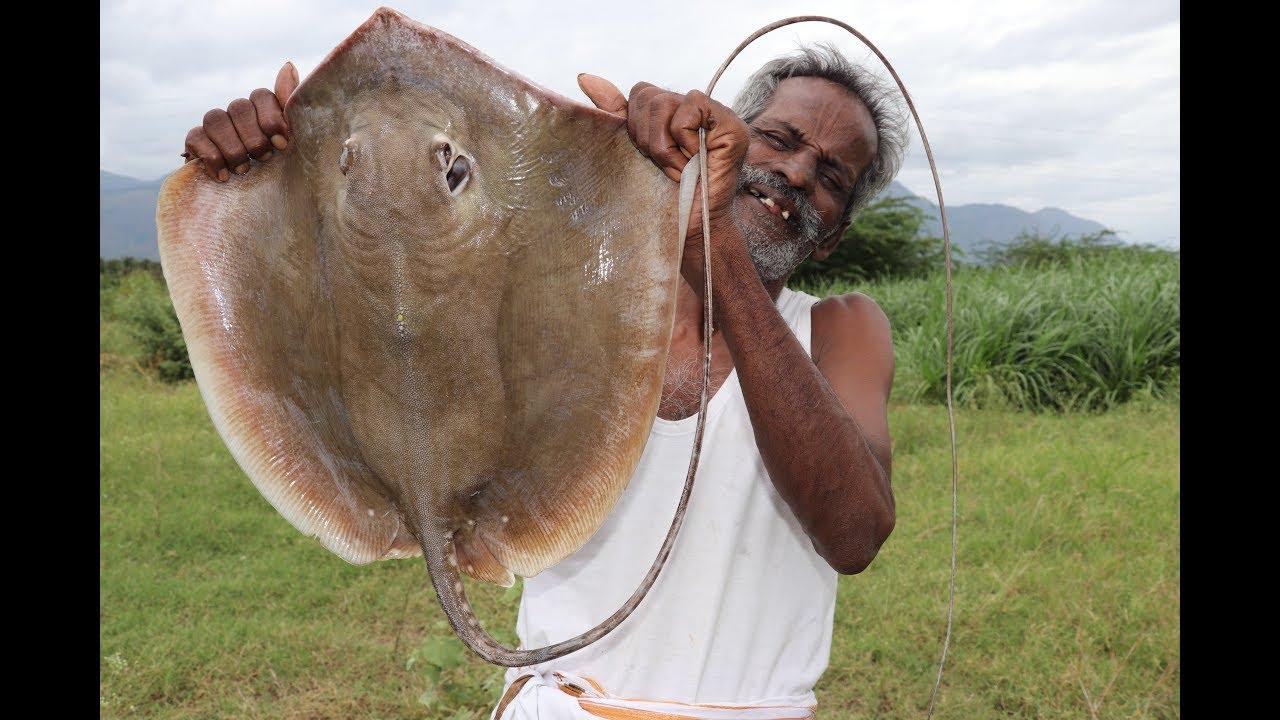 STINGRAY / South Indian authentic STINGRAY Fish Kulambu Prepared by my DADDY / Village food factory