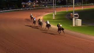Vidéo de la course PMU PRIX DES MATTHIOLES
