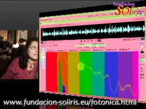 FIT FORNES COMIDA, CONEXION, NEOCORTEX, REPTIL, LIMBICO from YouTube · Duration:  11 minutes 42 seconds