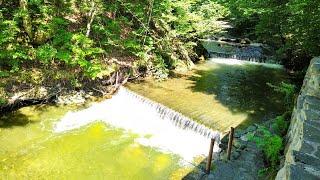 Звуки природы. Шум воды: лесной ручей. Очень красивое видео для релаксации / Forest stream