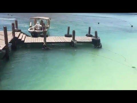 Mamutik Island, Sabah in HD