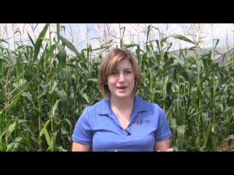 Pennsylvania Farm Bureau RFDTV Program 2012