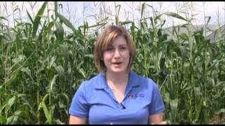 Pennsylvania Farm Bureau RFDTV Program 2012