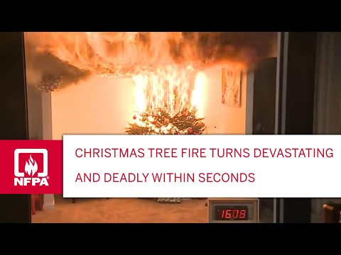 Tucson Happenings - Careful With Christmas Tree Fires! Donate It At These Locations!