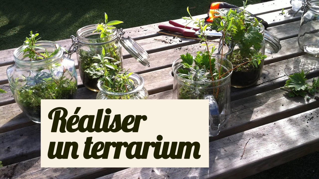 faire un terrarium nos astuces pour de belles boutures youtube. Black Bedroom Furniture Sets. Home Design Ideas