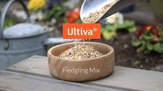 Ultiva® Fledgling Premium Seed Mix - GardenBird