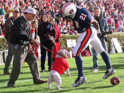 Corey Smith Every Dog Has It's Day (Georgia Football Tribute)