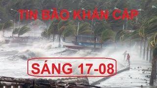 TIN BÃO SỐ 4: SÁNG 17/08 Bão Bebinca đổ bộ đất liền gió giật cấp 11, cảnh báo nguy hiểm