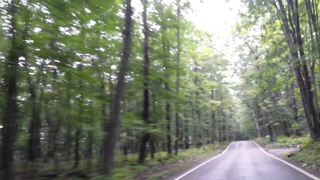 Tunnel of Trees Harbor Springs, Michigan Highway 119 - YouTube