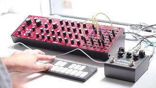 Behringer Neutron and Strymon El Capistan Dark Ambient - Paraphonic Noisy Drone Chords