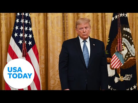 President Trump on small business support amid coronavirus   USA TODAY