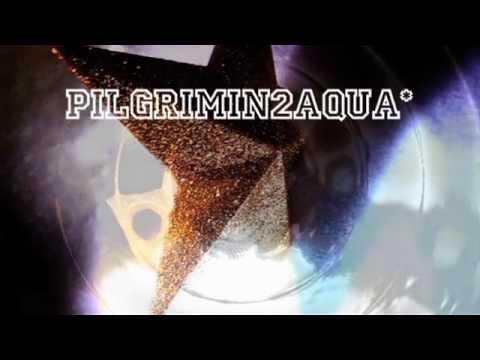 AngryFungi V's 'Pilgrimin2Aqua' (Vj-Dj HD720p)