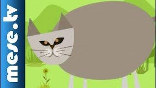 Arany László: A macska és az egér (rajzfilm mese)