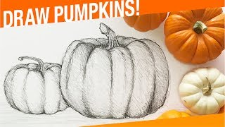 How To Draw A Pumpkin! How To Draw Thanksgiving Things!