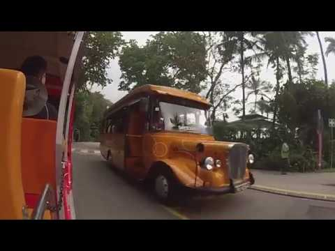 Sentosa Island, Singapore - Ride on the Sentosa Beach Tram (2018)