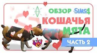 The Sims 4   Кошачья мята   Обзор   💞 Вуху! Кошек 💞   Woohoo