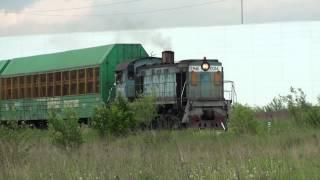 LOKOMOTIV ТГМ4Б-0014
