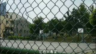 101dream街頭籃球夢想 上