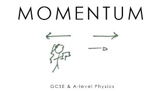 Momentum - A-level & GCSE Physics