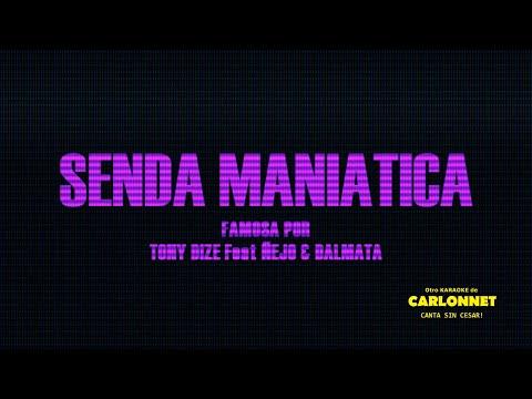 Senda maniatica  - Tony Dize feat Ñejo y Dalmata (Karaoke)