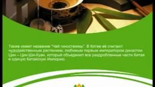 Антилипидный чай: китайский зелёный чай 6-ти сортов