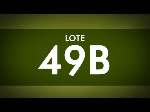 LOTE 49 B