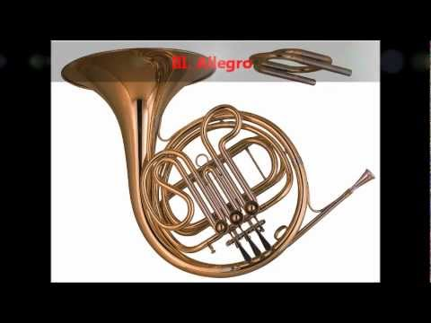 Mozart - Horn Concerto No. 3 in E flat, K. 447 [complete]