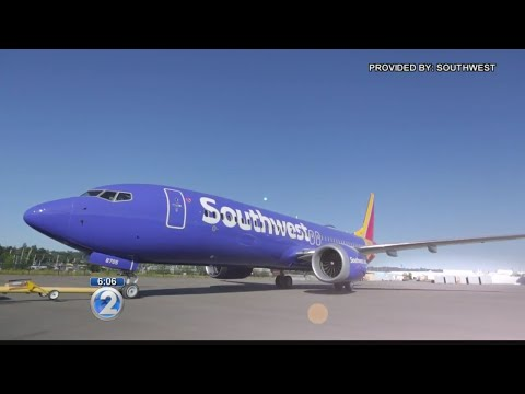 tourism-officials-view-southwest's-arrival-as-significant-boost-to-hawaii's-economy