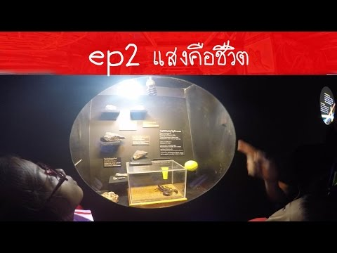 ครูนกเล็ก | EP2 เที่ยวงานมหกรรมวิทยาศาสตร์และเทคโนโลยีแห่งชาติ แสงคือชีวิต