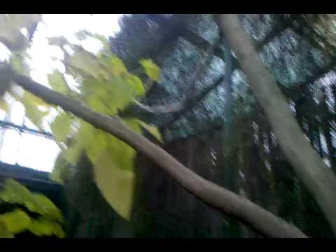 Video-2010-05-02-16-58-42.3gp