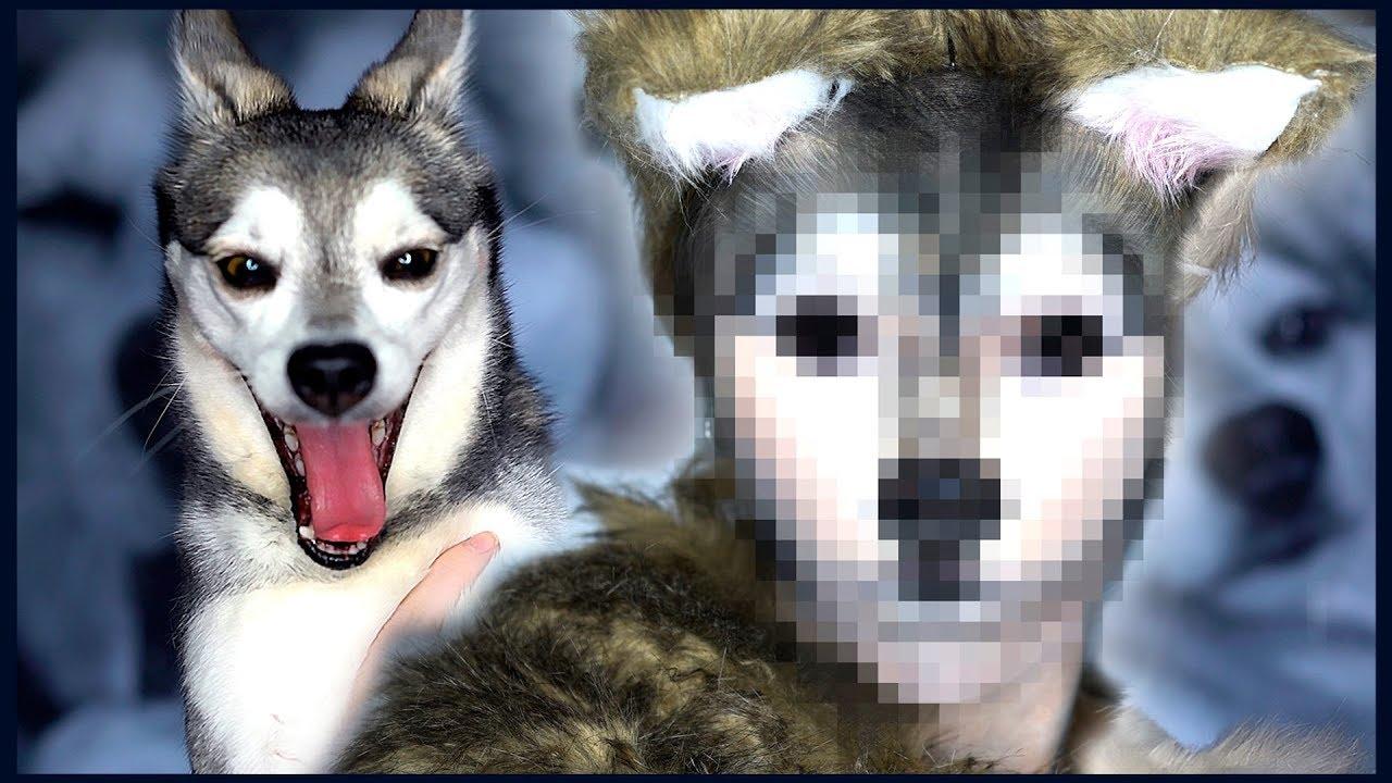 i-transformed-myself-into-my-dog-ripley