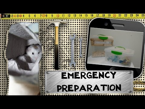 Full download how to make a bin cage extension for Hamster bin cage tutorial