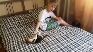 Как избавится от скрипа кровати