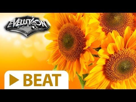 (SOLD) - Smooth Oldschool Rap Beat Hip Hop Instrumental Instru Ritmo - SUNFLOWER by Evelution Beats