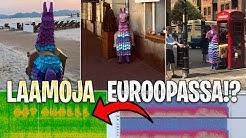 LAAMOJA YMPÄRI EUROOPPAA?!? - FORTNITE UUTISET