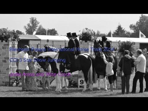 Jodie Amos: Blenheim Palace International Horse Trials