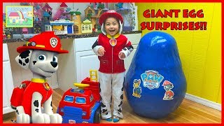 Paw Patrol Toys with Marshall Pup!