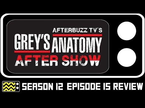 Grey's Anatomy Season 12 Episode 15 Review & After Show | AfterBuzz TV