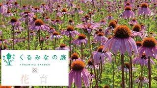 くるみなの庭×花育