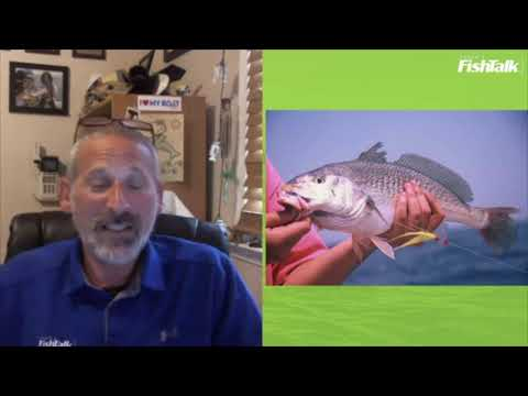 Tips For Bottom Fishing On The Chesapeake Bay | LIVE With Lenny Rudow