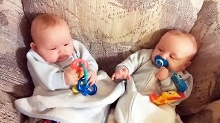 Cute Kids Stealing Things are ALL FUNNY! - GET READY to LAUGH!   Funny BABIES