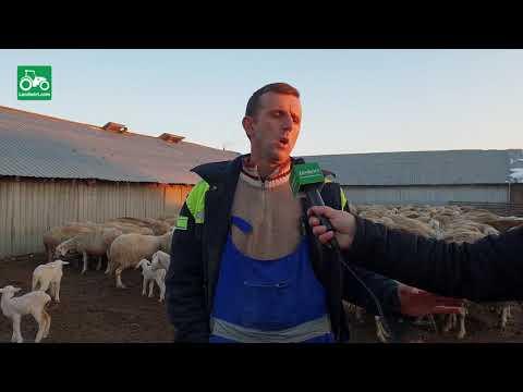 Baixar Ferma e deleve në fshatin Dobrajë e madhe të komunës së Lipjanit