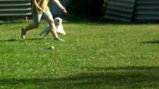 2010 VII. 16. videa Arósek - oprava kruhu.MOV