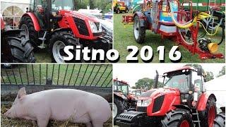 Wystawa zwierząt hodowlanych i maszyn rolniczych Sitno 09.07.2016r. || Lubelskie|| ◄ZETEXX85►