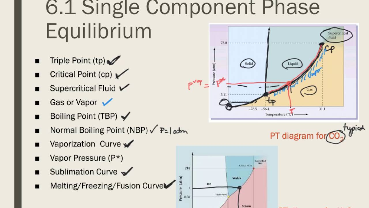 hight resolution of d4 phase diagrams for pure substances