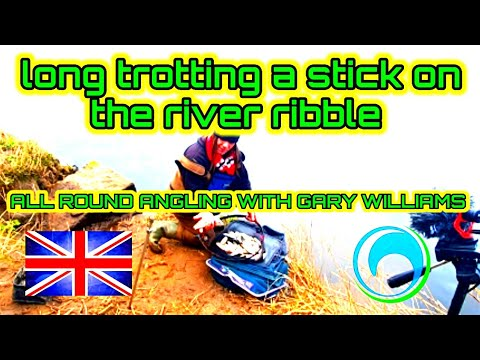 The River Ribble Trotting  A Stick Float In A Deep Swim